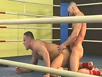 Beefy Boxers Fucking On The Ring