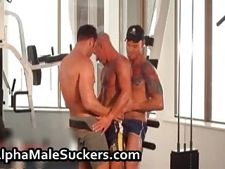 Hardcore gay fucking and sucking porn